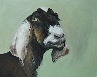 Oil painting Flannery by Katherine Bennett