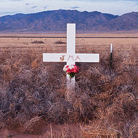 Tumbleweed Descanso, Hwy 47 near Belen, NM. 2015 by Jim Holbrook
