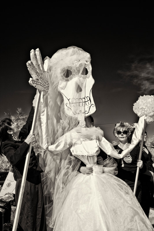 Preparation for South Valley Marigold Parade, Albuquerque, NM, 2012. by Jim Holbrook