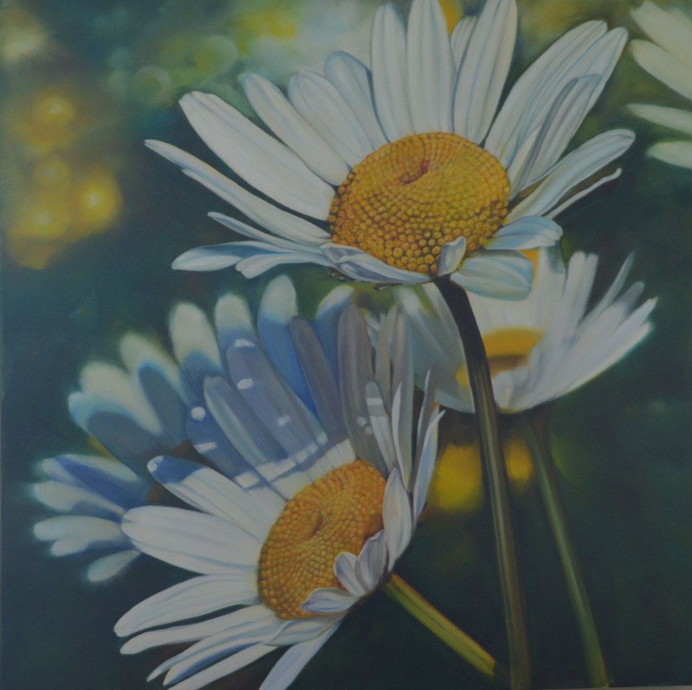 Oil painting Summer Fields of Daisies by Bev Robertson