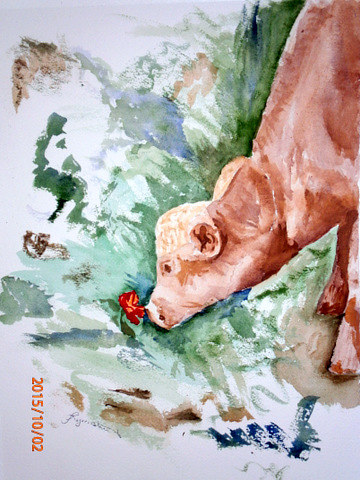 Watercolor Calf with Poppy by Lynne Stewart