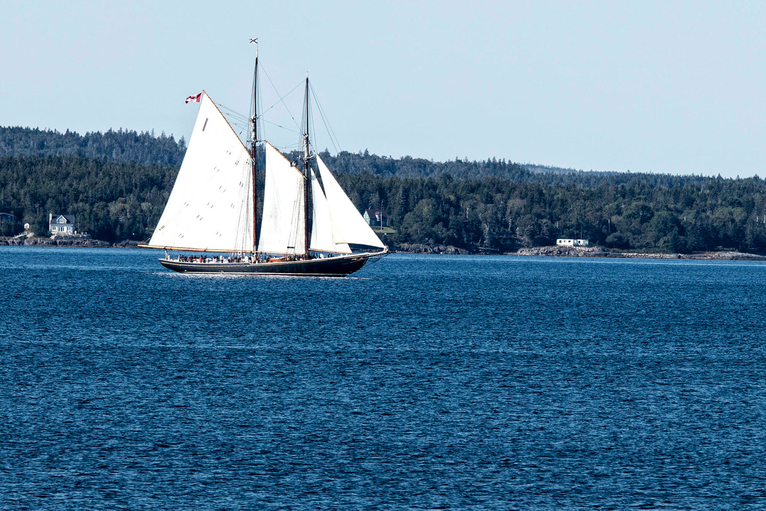 Bluenose II by William Kent