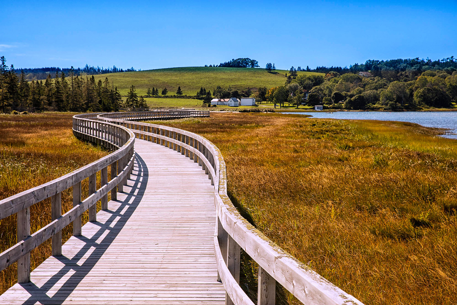 Rissers Beach Boardwalk by William Kent
