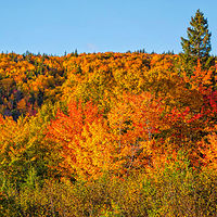 4 Cabot Trail 2 by William Kent