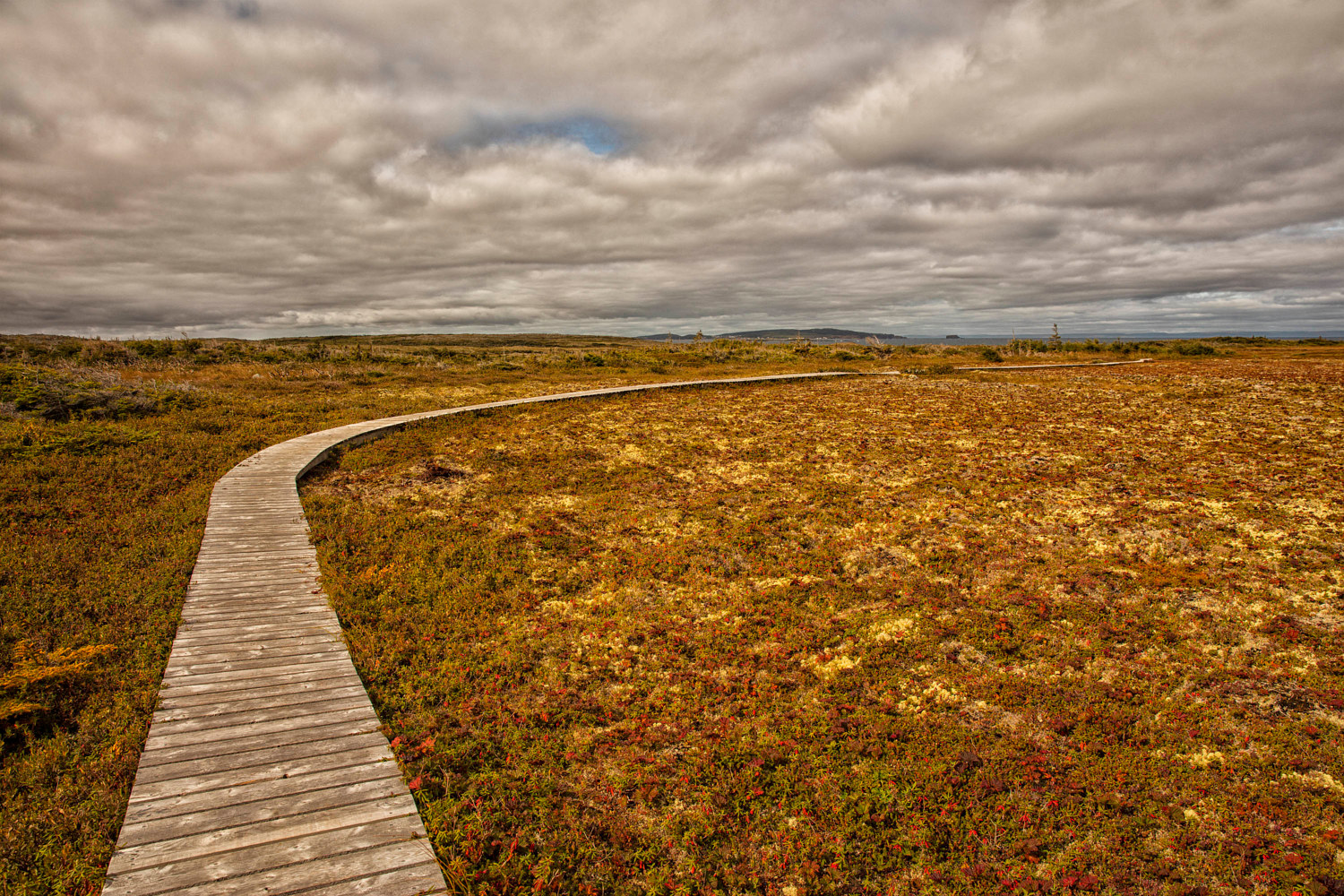 L'Anse aux Meadows Boardwalk by William Kent