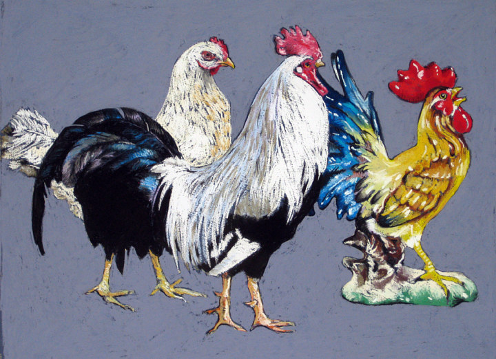 Domestic Chickens by Ellen Cornett