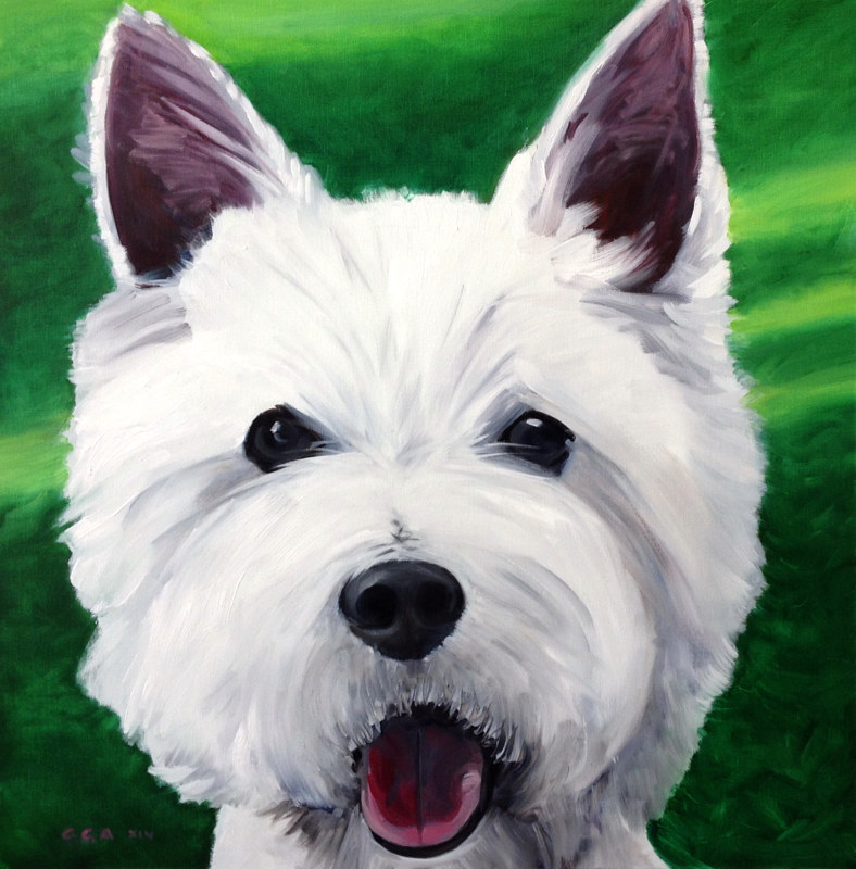 Westie by Ginger Arthur