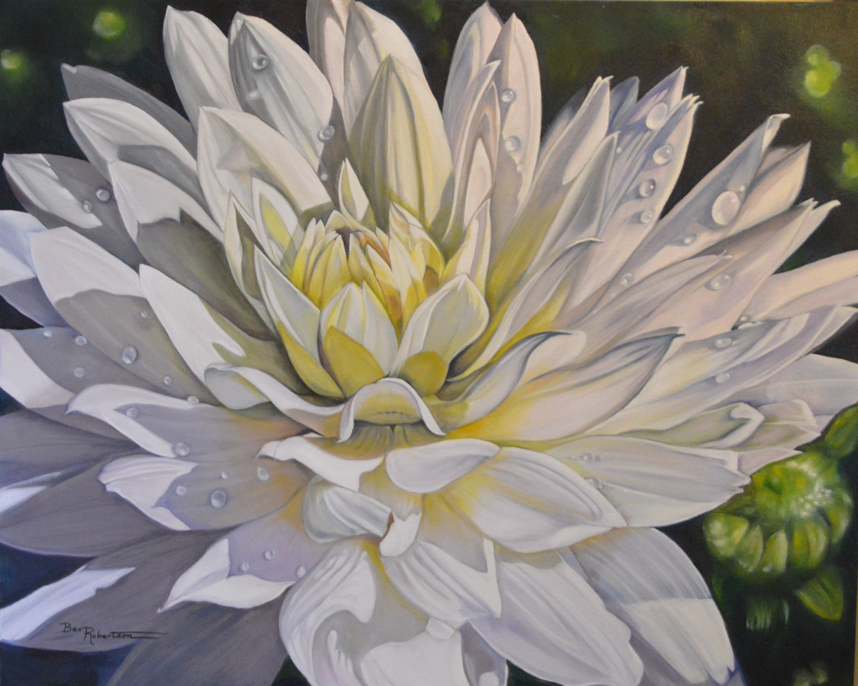 Oil painting Dew Drops on My Dahlia by Bev Robertson
