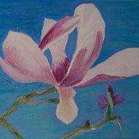 Oil painting   Magnolia and bud by Gwenda Branjerdporn