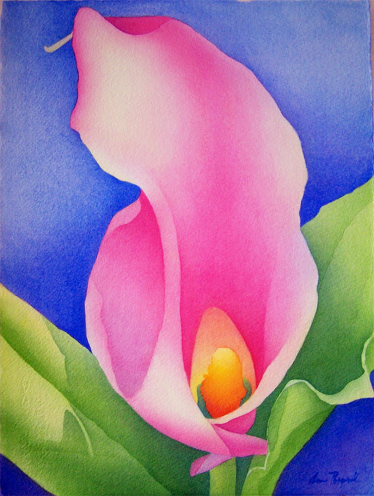 Watercolor Pink Calla by Anne Popperwell