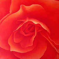 Acrylic painting Orange Begonia by Anne Popperwell