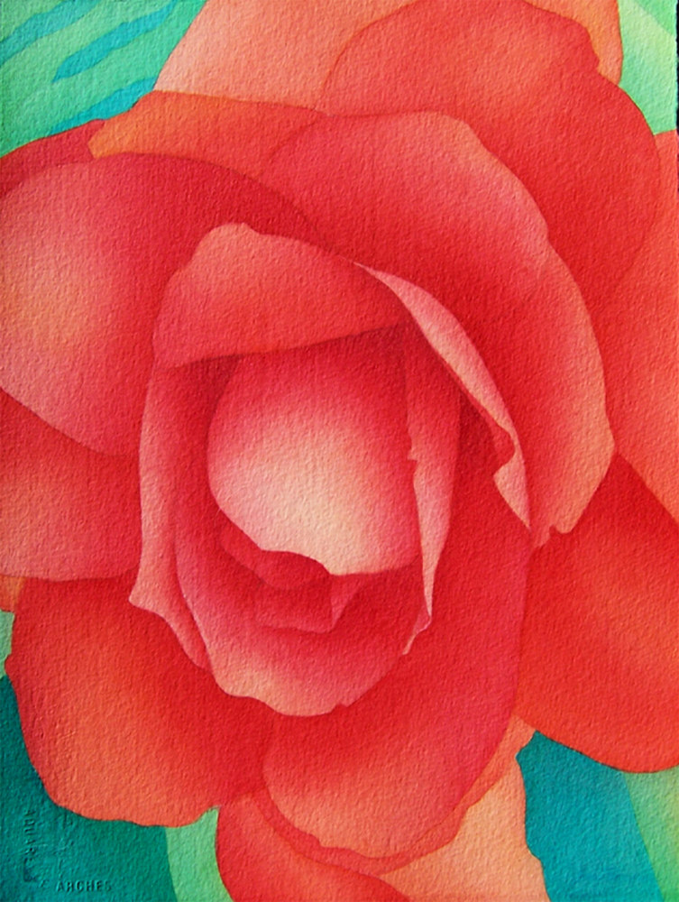 Watercolor Begonia by Anne Popperwell