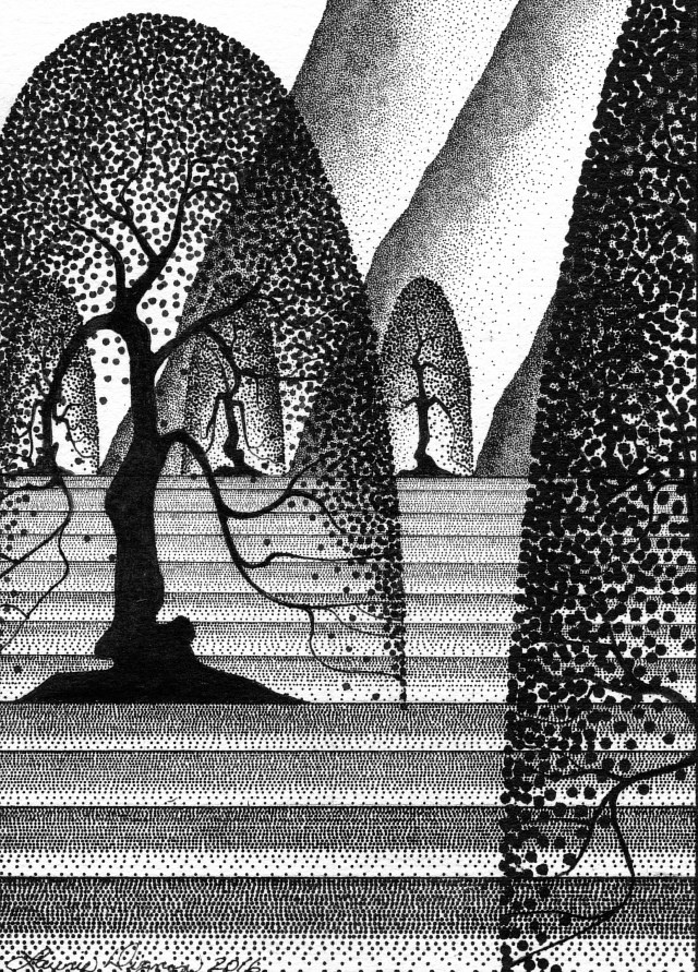 Drawing Black and White Orchard by Lawrie  Dignan