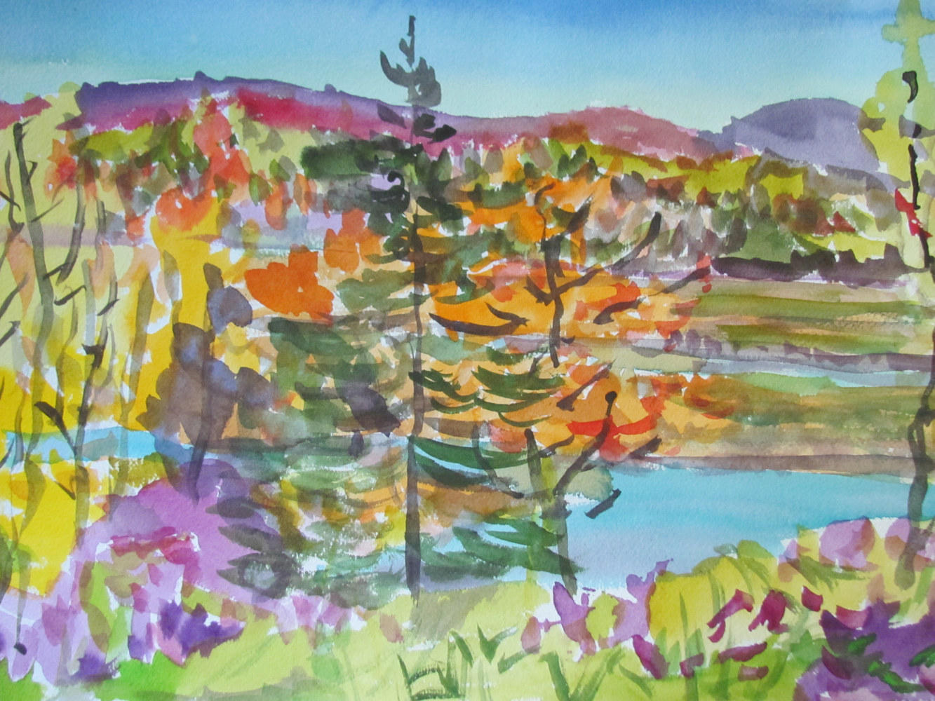 Watercolor East Orrington Fall View by Michael Shyka