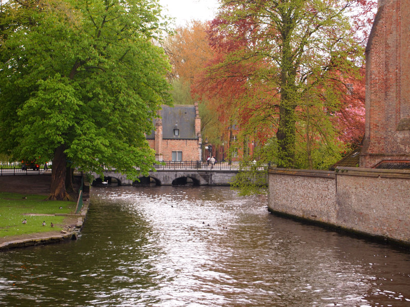 Belgium Canal by Ann Williams