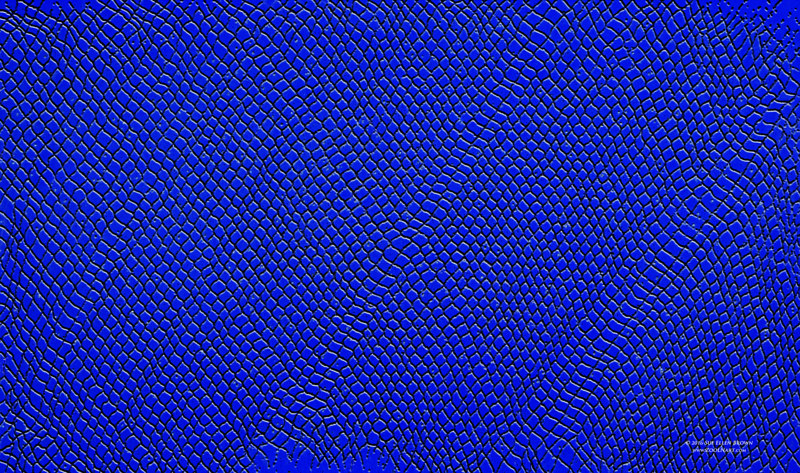 Drawing Dragonskin in sapphire blue by Sue Ellen Brown