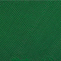 Drawing Dragonskin in emerald green by Sue Ellen Brown