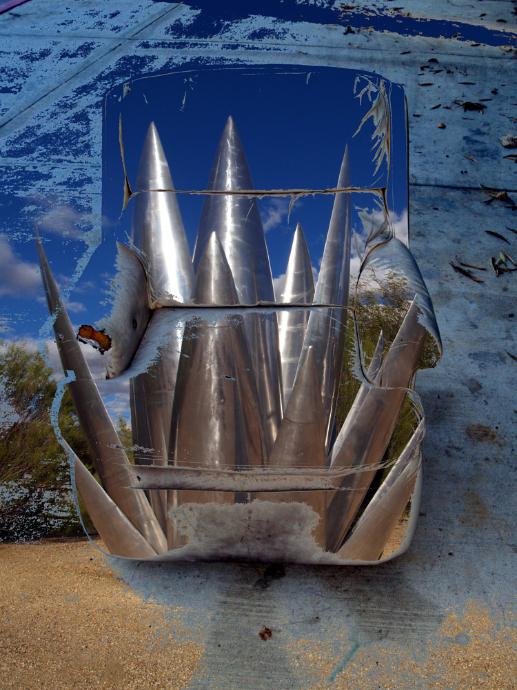 Photography chair 10 Blue Agave by Linda Richardi