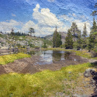 Print Meadow Round Lake by Linda Richardi