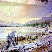 Print Wood Print Aloha Lake by Linda Richardi