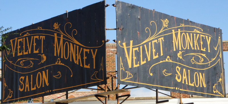 Painting Velvet Monkey Salon Billboard by Elizabeth Mercer