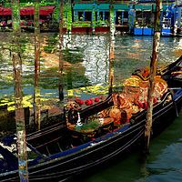 Photography Venice Waits by Linda Richardi