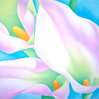 Acrylic painting 3 Callas by Anne Popperwell