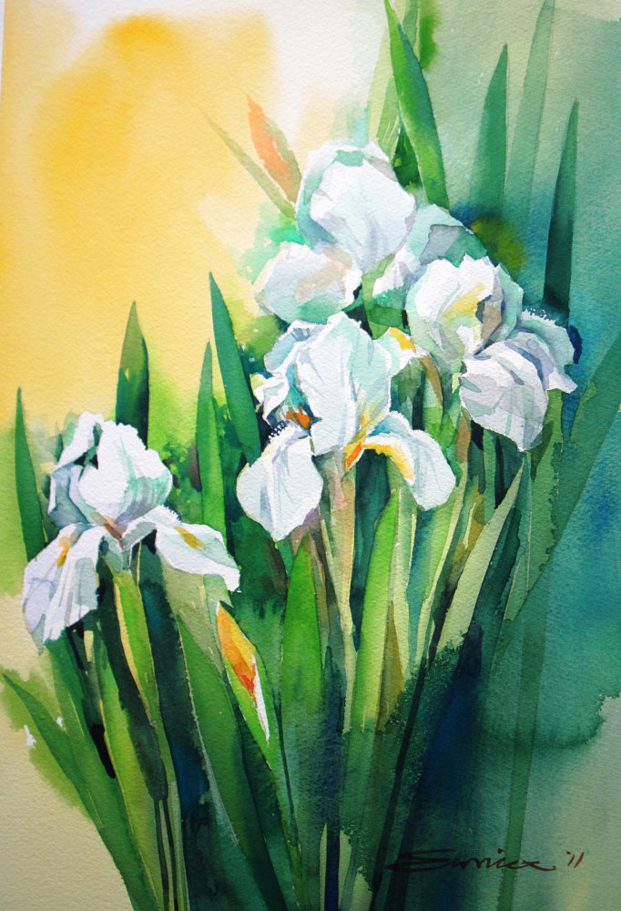 Watercolor White Iris by Eunice Sim
