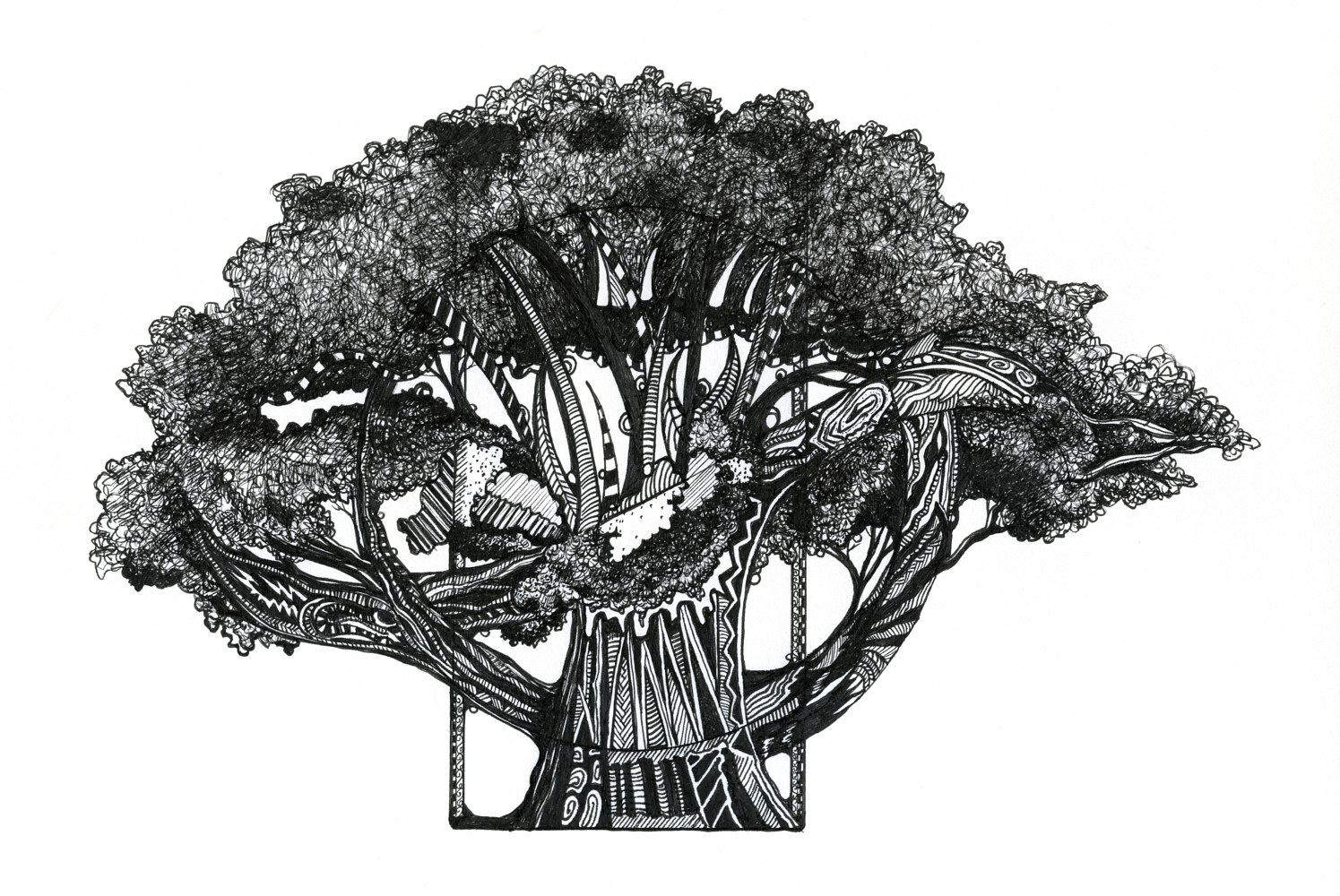 Drawing Tree of Summer by Danielle Scott