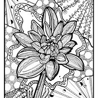 Drawing Dahlia in Bloom by Danielle Scott