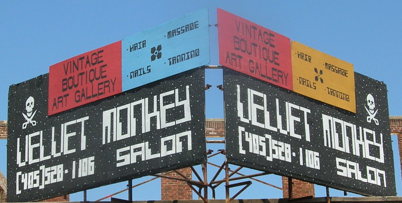 Old Velvet Monkey Salon Billboard by Elizabeth Mercer