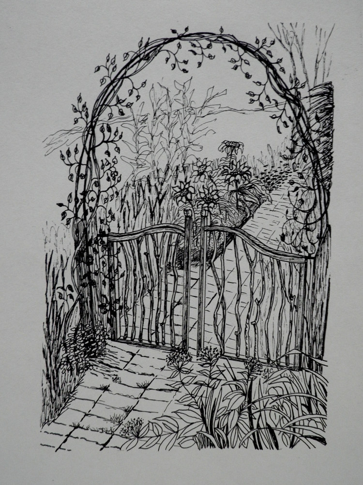Drawing Garden Gate by Jayne Crawford