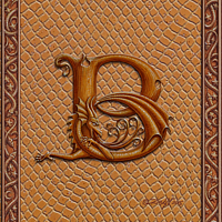Draco Token B, Gold on Gold by Sue Ellen Brown