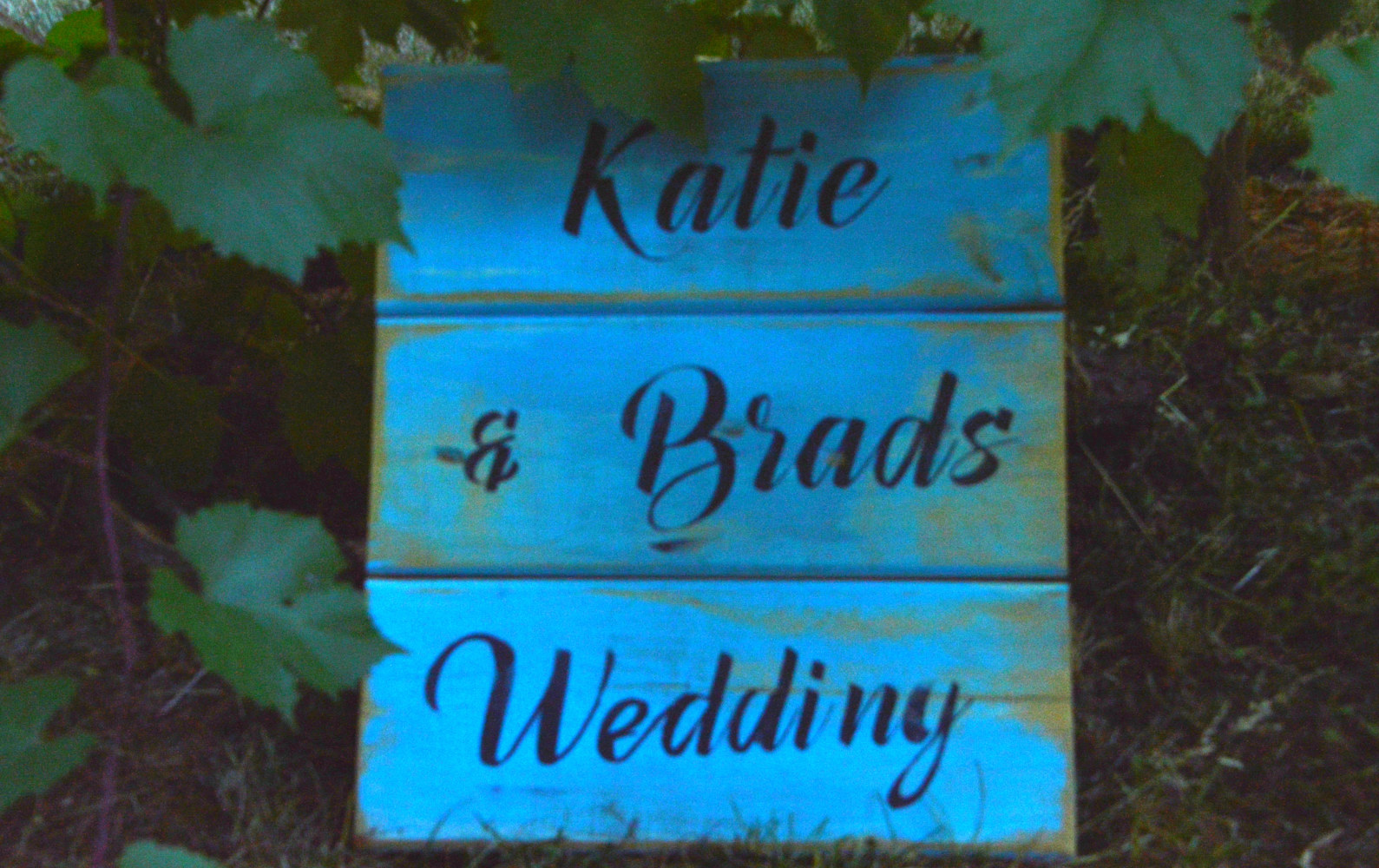 Wedding Couple signs by Bev Robertson