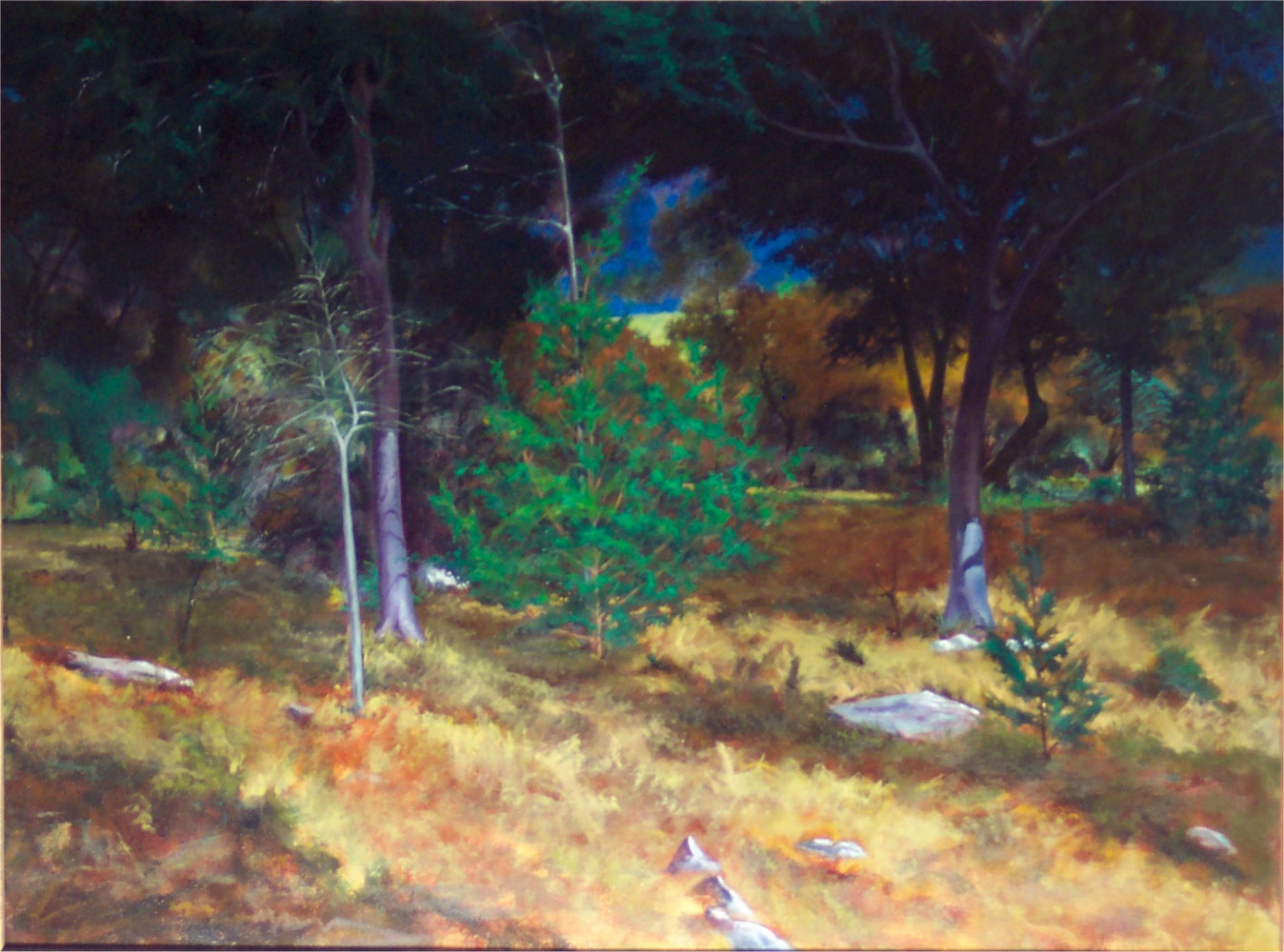 Afternoon Delight, Georgetown, Texas 30x40 by Gary Nowlin