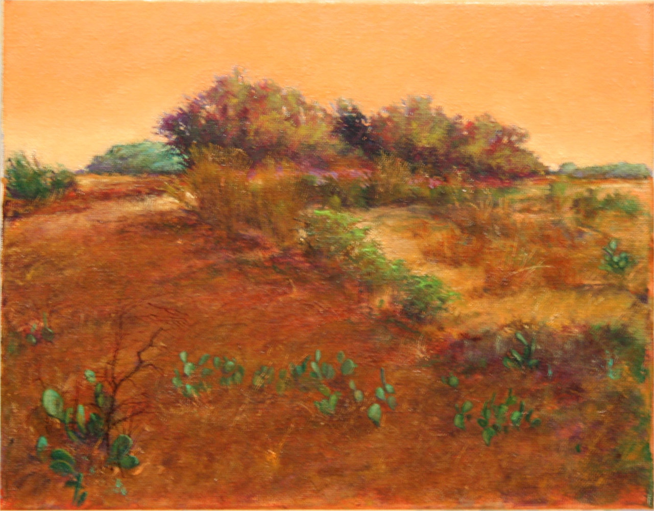 Brushline Hughes Ranch  Brady Texas  11x14 by Gary Nowlin