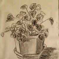 Print Potted Plant by Jan Wirth