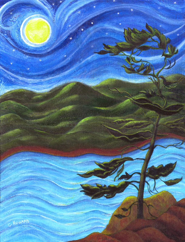 Acrylic painting Starry Night at Algonquin Park  by Catherine Howard