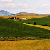 Palouse 3 by William Kent