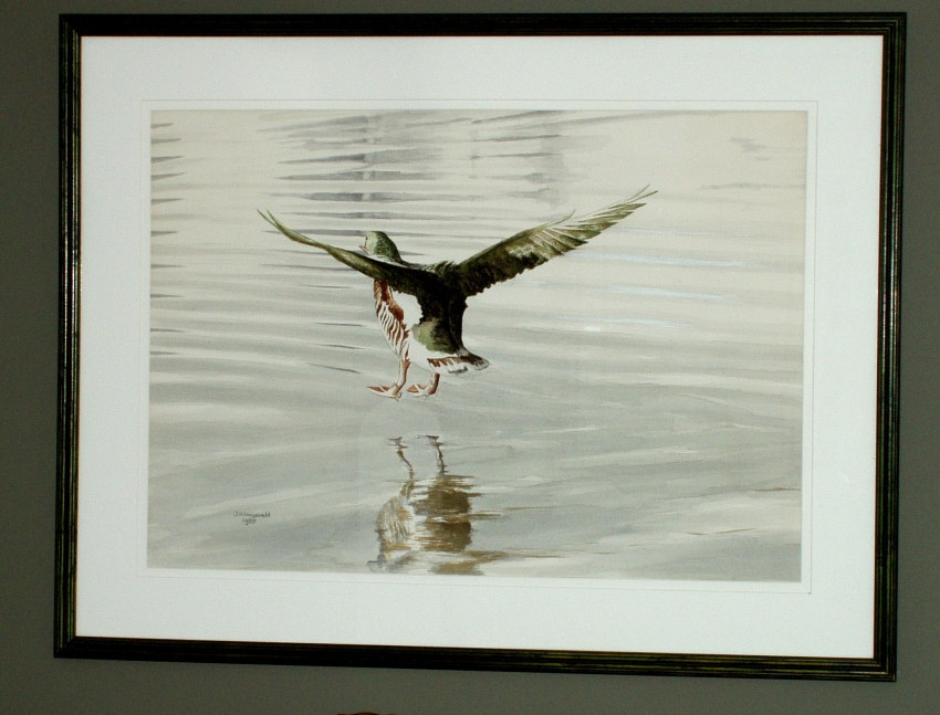 reflections landing on water_NEW by John Langeveld
