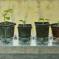 Oil painting Six Pots on a Windowsill by Sarah Peschell