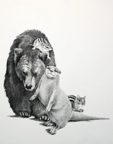 Drawing The Bear, the Otter and the Chipmunks by Ellen Cornett
