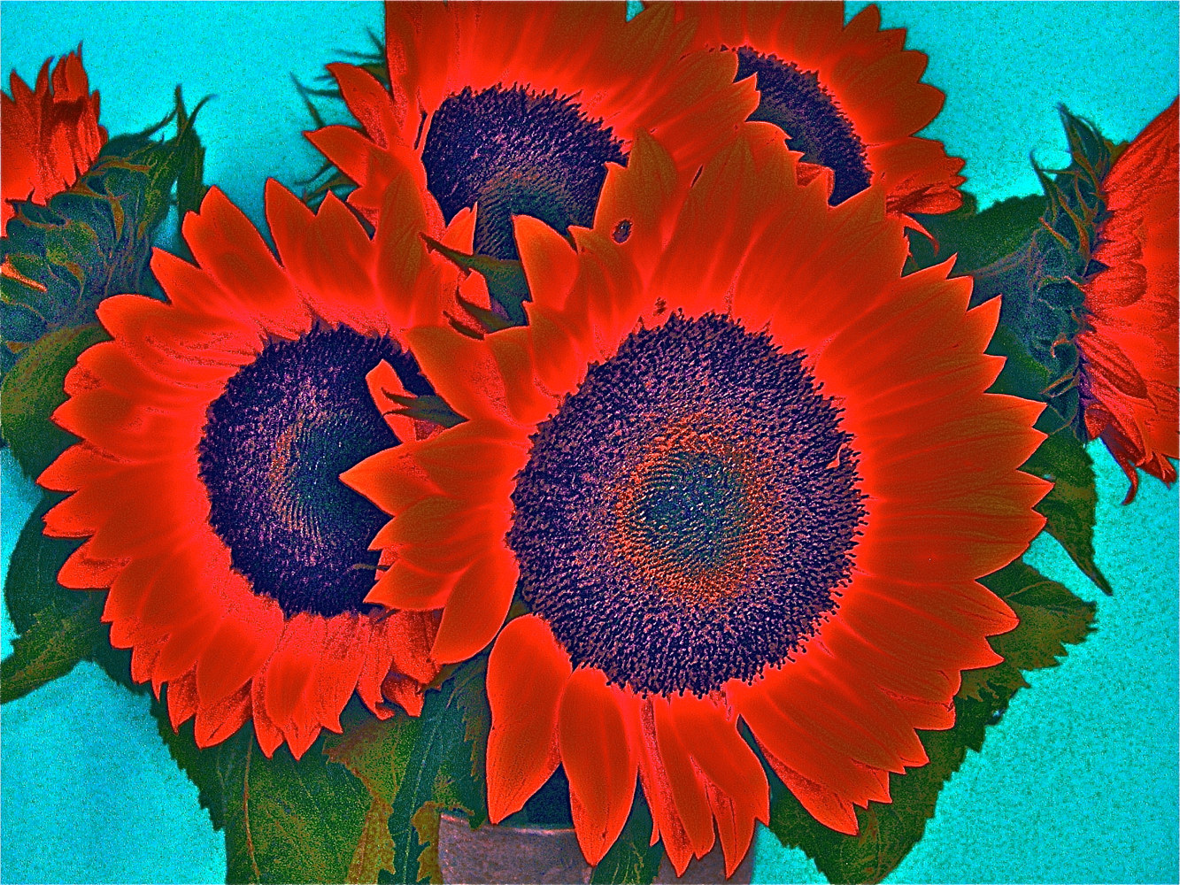 RED HOT SUNFLOWERS by Joeann Edmonds-Matthew