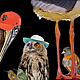BAY AREA BIRDS 36x12 by Joeann Edmonds-Matthew