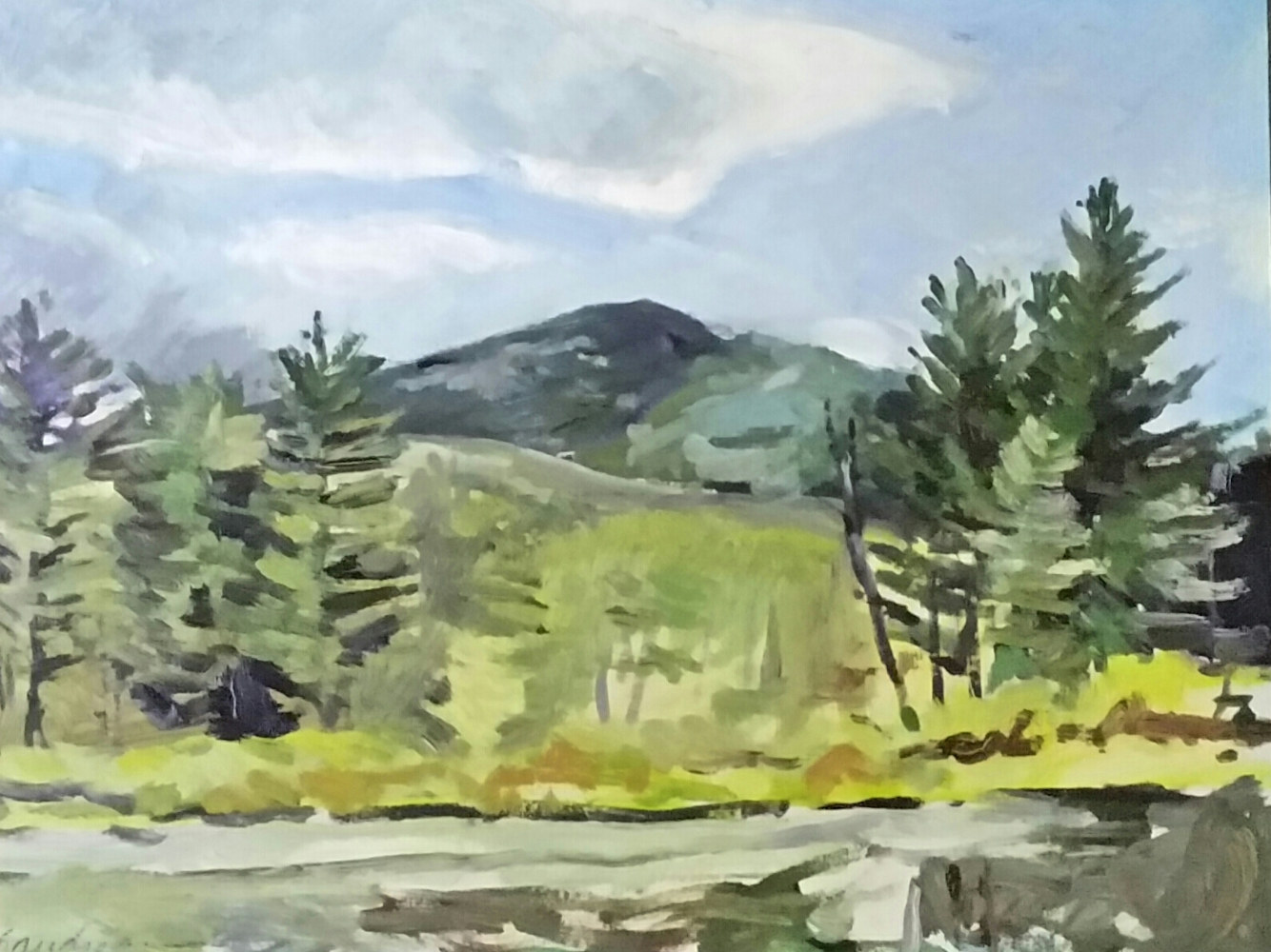 Painting  Before the Rain- Brothers mt, from Keene Valley  by Michael  Gaudreau