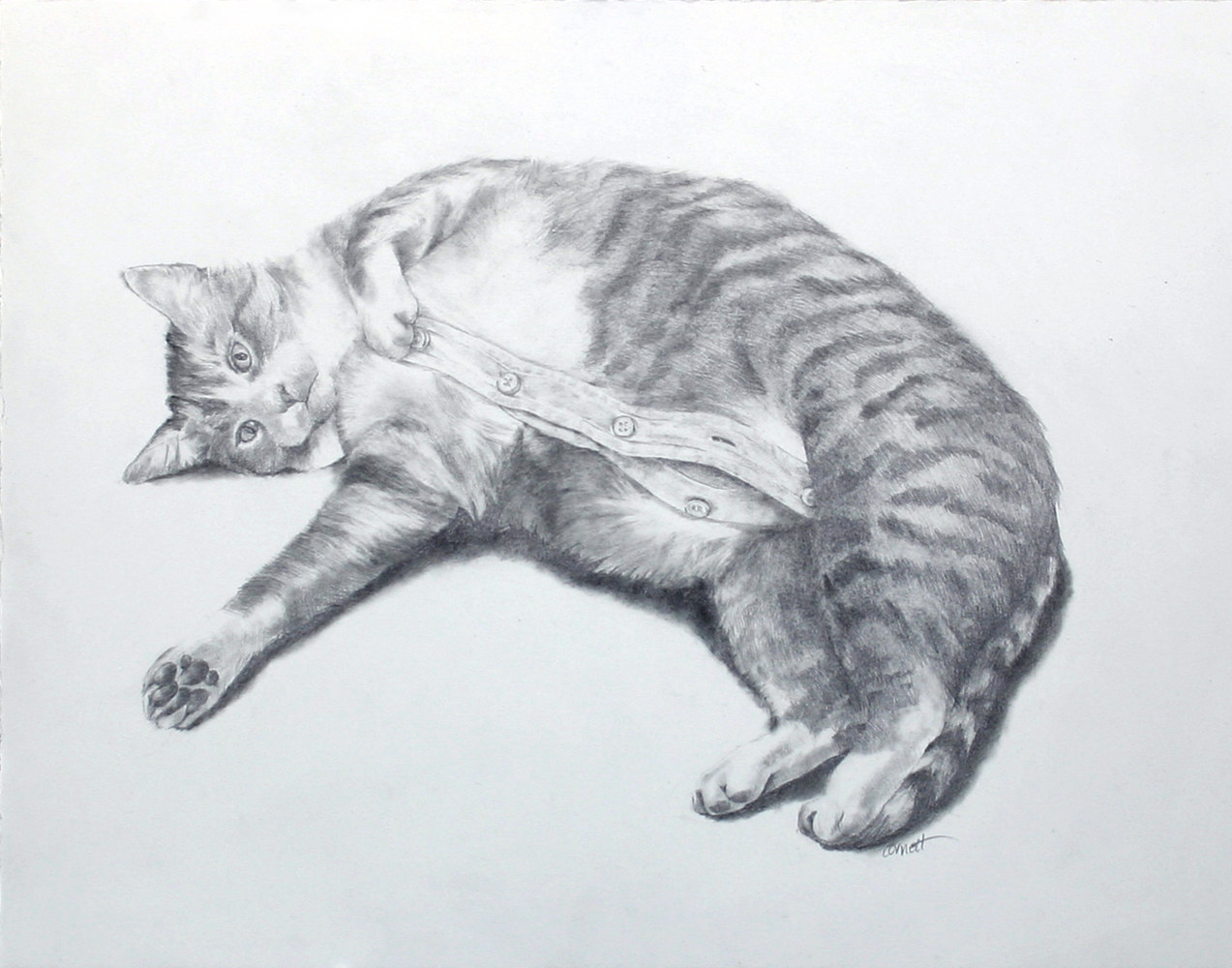 Drawing Cat's Pajamas by Ellen Cornett