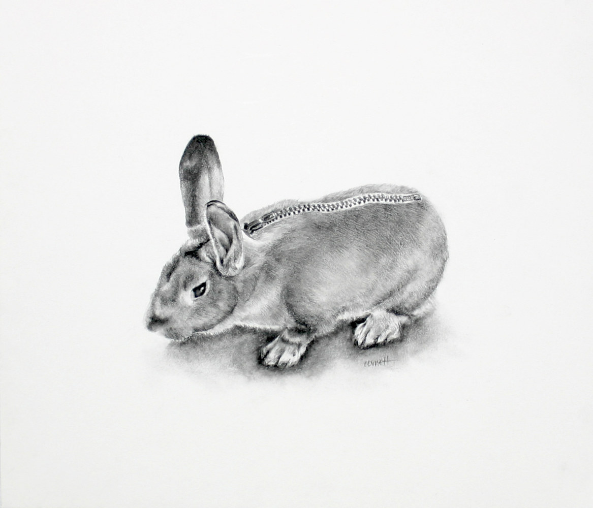 Drawing Dressed Rabbit by Ellen Cornett