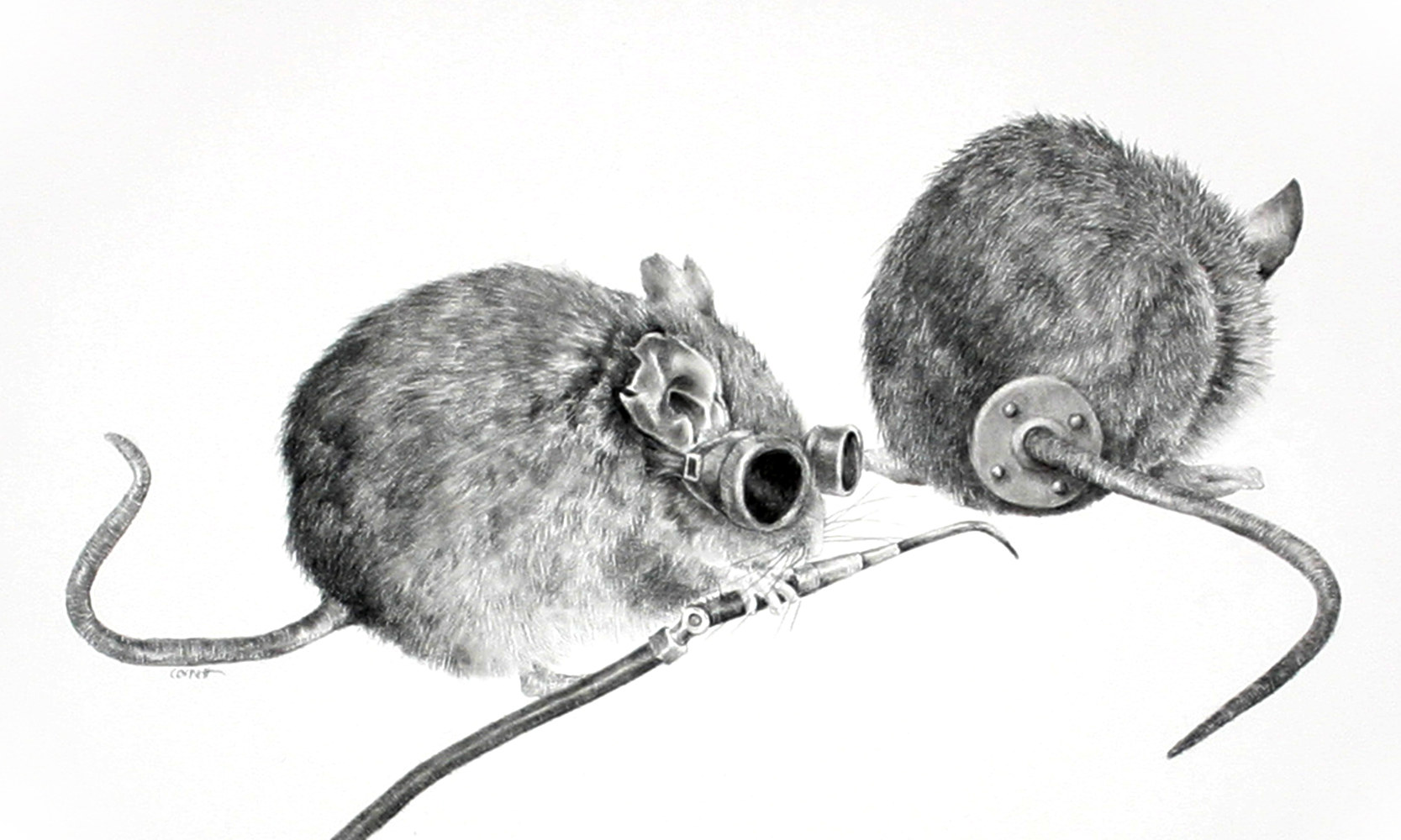 Drawing The Second Blind Mouse by Ellen Cornett