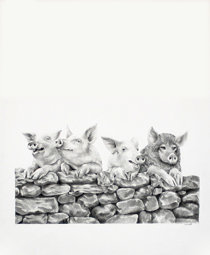 Drawing The Fourth Pig by Ellen Cornett
