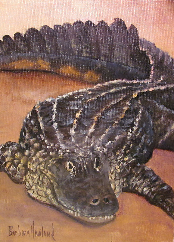 Oil painting  Alligator  by Barbara Haviland